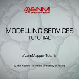 Nano Modelling Services Tutorial