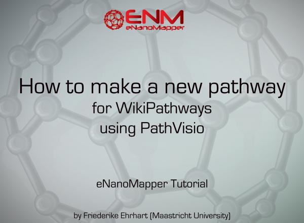 eNanoMapper tutorial: How to make a pathway